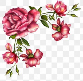 Prickly Rose Peony - Watercolor Pink Flowers PNG
