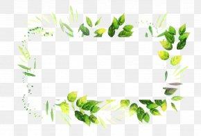 Perennial Plant Flower - Floral Flower Background PNG