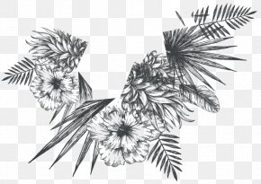 Songkran Festival - Drawing /m/02csf Pine Line Flowering Plant PNG