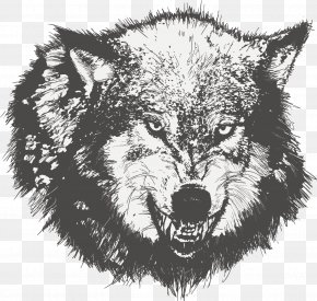 Vector Painted Wolf - Dog Drawing Black Wolf Sketch PNG