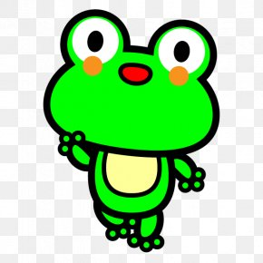 Frog - Toad Tree Frog Drawing Clip Art PNG