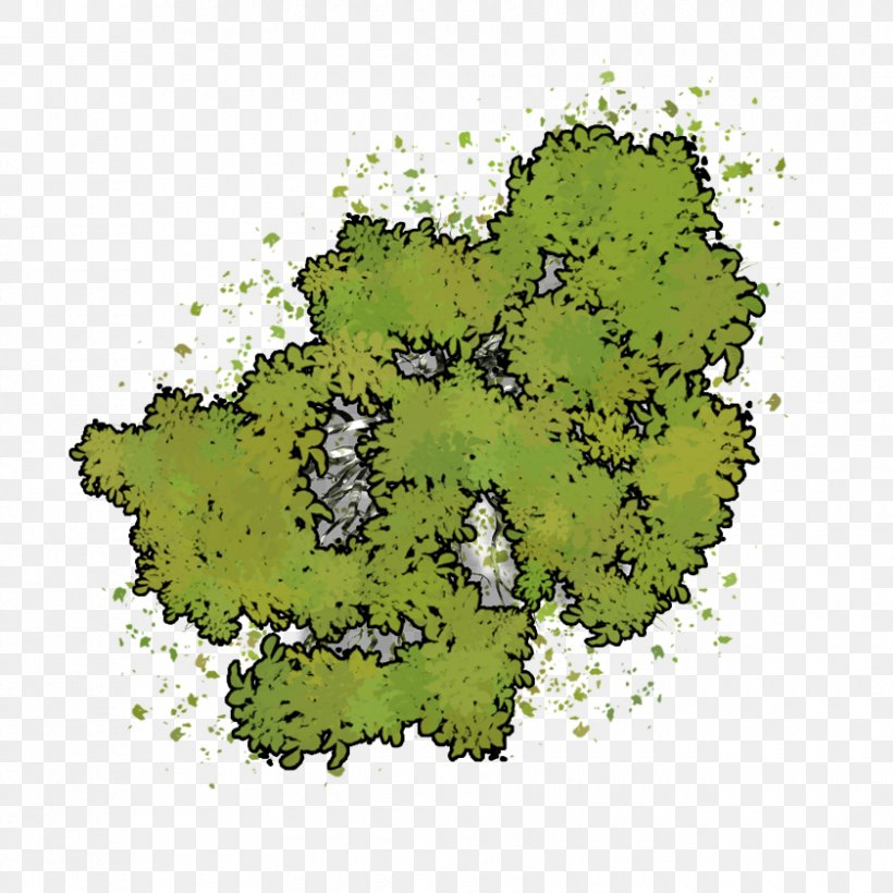 Dungeons & Dragons Tree Roll20 Pathfinder Roleplaying Game Wood, PNG, 840x840px, Dungeons Dragons, Bugbear, Code, Fantasy Grounds, Forest Download Free