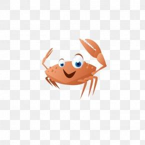 Cartoon Crab - River Crab Cartoon PNG