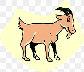 Z-Word Cliparts - Fainting Goat Boer Goat Goat Simulator Three Billy Goats Gruff Coloring Book PNG