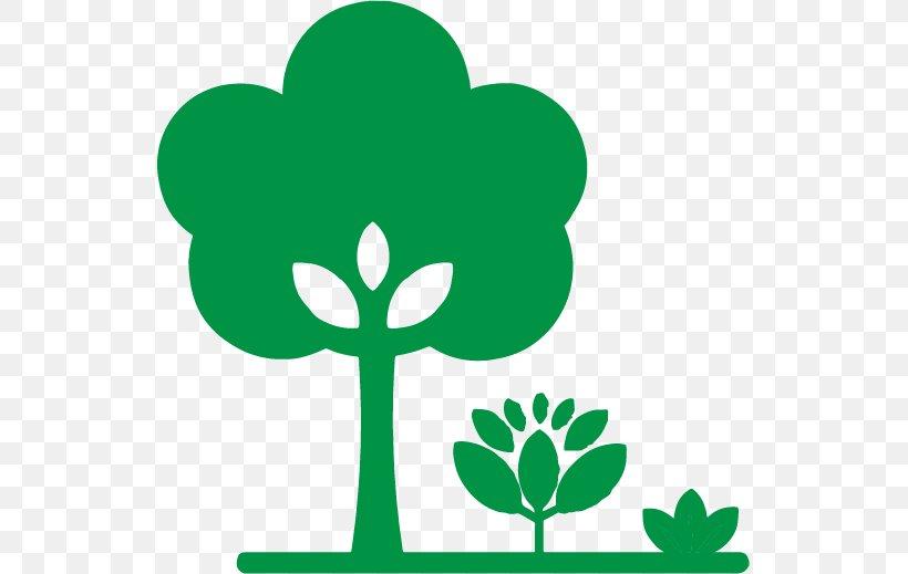 Green Leaf Symbol Plant Tree, PNG, 535x519px, Green, Leaf, Plant, Plant Stem, Symbol Download Free
