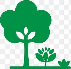 Plant Stem Tree - Green Leaf Symbol Plant Tree PNG