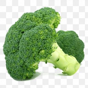 Broccoli - Cream Of Broccoli Soup Vegetable Organic Food PNG