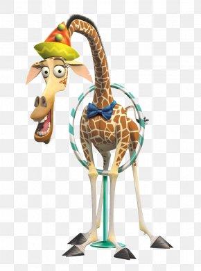 Cute Cartoon Circus Giraffe - Northern Giraffe Cartoon Madagascar Illustration PNG