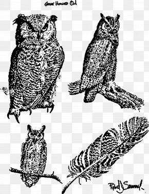 Owls - Great Horned Owl Bird Of Prey Snowy Owl PNG