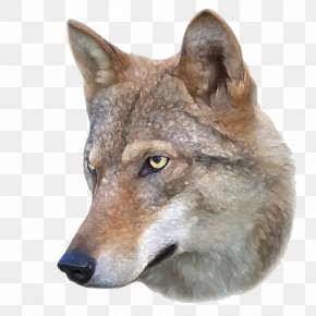 Brown Wolf Head - Dog Eurasian Wolf Arctic Wolf Drawing Photography PNG