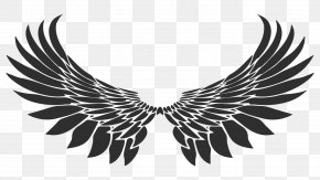 Wings - Drawing Royalty-free PNG