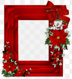 Holly Christmas Decoration - Christmas Poinsettia PNG