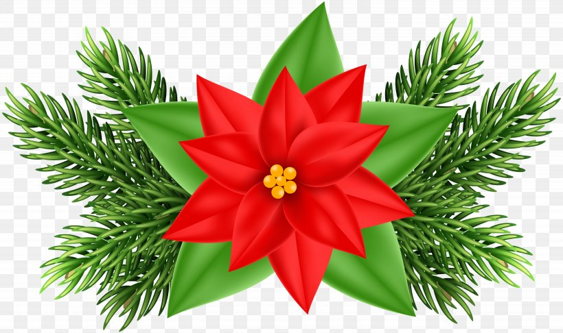 Poinsettia Christmas Ornament Clip Art, PNG, 6000x3560px, Christmas, Art, Christmas Decoration, Christmas Ornament, Christmas Tree Download Free