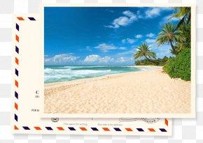 Beach - Beach Cusps Arecaceae Stock Photography Sandy Beach PNG