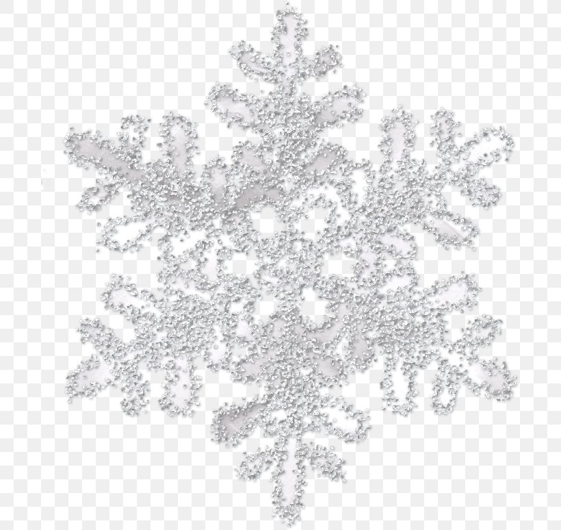 Snowflake Icon, PNG, 700x774px, Snowflake, Black And White, Christmas, Crystal, Generation Snowflake Download Free