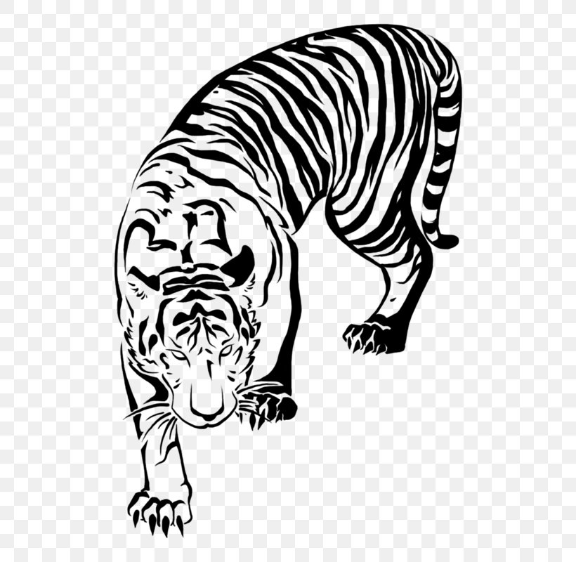 Tiger Tattoo Tribe Lion Png 800x800px Tiger Ambigram Animal Arm Big Cats Download Free Tiger tattoos have become quite popular due to different astonishing tiger tattoo designs, each featuring fearless tigers such as the bengal tiger or the white tiger. tiger tattoo tribe lion png 800x800px