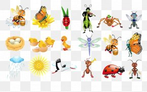 Insect - Insect Butterfly Bee Ant PNG
