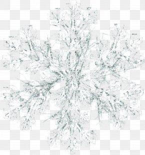 Snow White - Snowflake Icon PNG