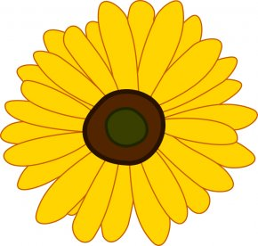 Flower Clip Art - Common Sunflower Clip Art PNG