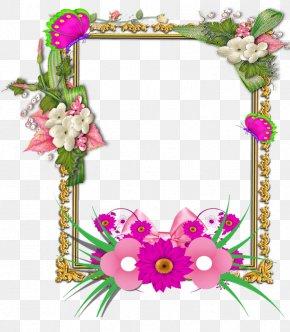 Frame - Picture Frames Flower E-card Molding PNG