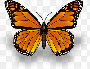 Monarch Butterfly Icons - Monarch Butterfly Insect Drawing Painted Lady PNG