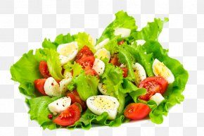 Vegetable Salad - Vegetable Salad Cuisine Simmering PNG