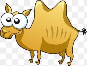 Cartoon Big Eyes Bactrian Camel - Bactrian Camel Drawing PNG