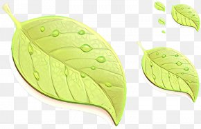 Flowering Plant Tree - Leaf Green Plant Flower Tree PNG