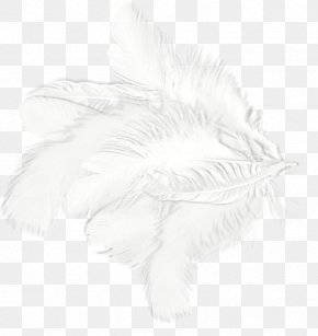 White Feathers - White Feather Drawing Black Pattern PNG