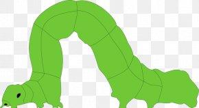 Inch Worm Cliparts - Mammal Cartoon Green Illustration PNG
