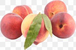 Peach Image - Crumble Peach Clip Art PNG