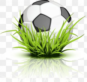 Soccer Ball - The Tree Frog Clip Art PNG