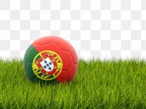Portugal Football - Nottingham Forest F.C. England National Football Team Portugal UEFA Euro 2016 PNG