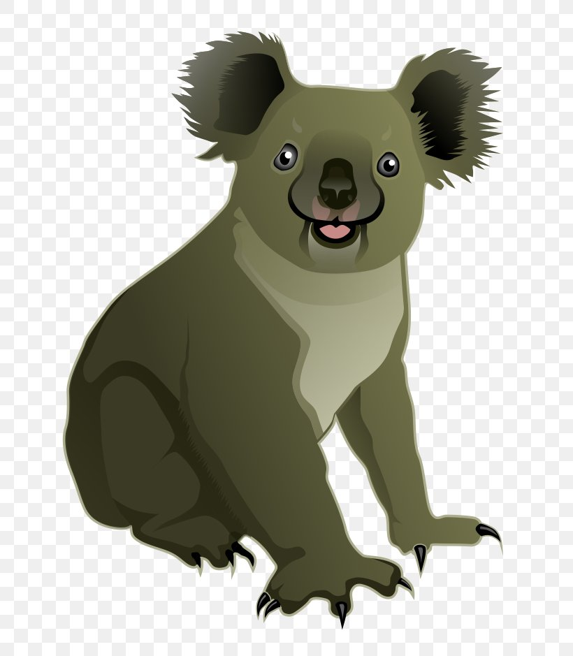 Koala Bear Cuteness Clip Art, PNG, 778x939px, Koala, Animal, Baby Koala, Bear, Billabong Zoo Download Free