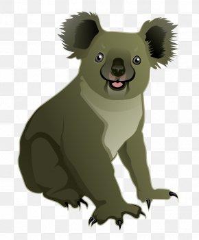 Koala - Koala Bear Cuteness Clip Art PNG