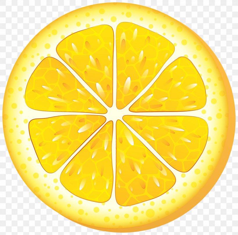 Lemon Slice, PNG, 3000x2965px, Orange, Bitter Orange, Citric Acid, Citron, Citrus Download Free