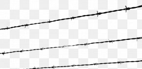 Barbwire - The Holocaust Kristallnacht Barbed Wire Fence PNG