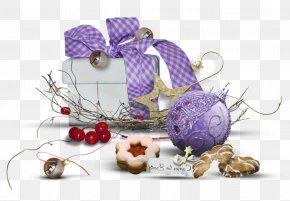 Still Life Photography Plant - Christmas Ornaments Christmas Decoration Christmas PNG