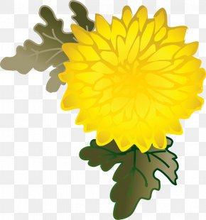 Dandelion - Dandelion Chrysanthemum Pot Marigold Petal PNG