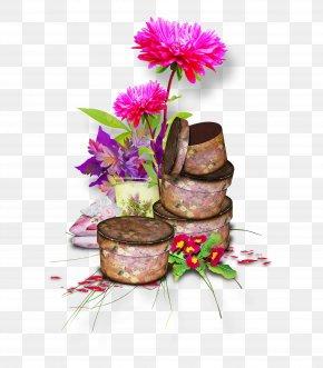 Pot - Flower PNG