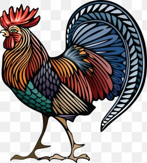 Chicken - Chicken Rooster Stock Illustration Drawing PNG