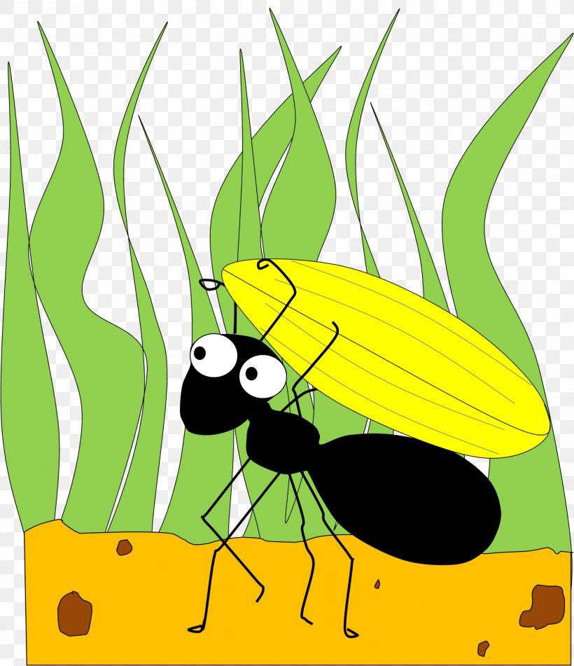 Grasshopper Royalty-free Clip Art - Product Design Transparent PNG