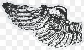 Black Pretty Wings - Wing Black And White Photography Visual Arts PNG
