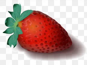 Strawberry - Vector Graphics Clip Art Illustration Image PNG
