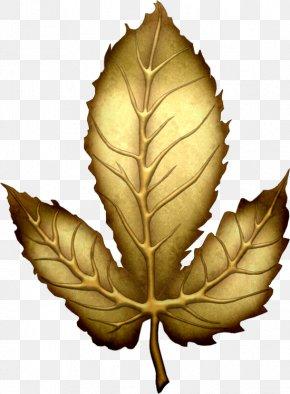 Gold Leaf - Leaf Gold Clip Art PNG
