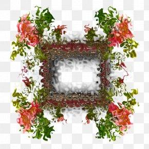 2016 McLaren 570S - Floral Design Flowerpot Leaf Flowering Plant PNG