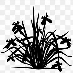 M Clip Art Plant Stem Flower Leaf - Black & White PNG