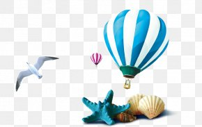 Conch Shells Balloon Seagull - Seashell Download PNG