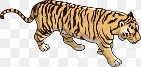 Beautiful Tiger - Tiger Lion Dog Wildcat Basabizitza PNG