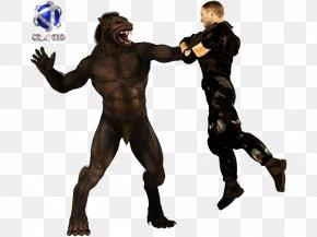 Werewolf - Werewolf 3D Rendering 2D Computer Graphics Gray Wolf PNG